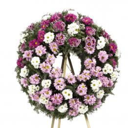 Smuteční věnec barevné kopretinové chryzantémy růžové