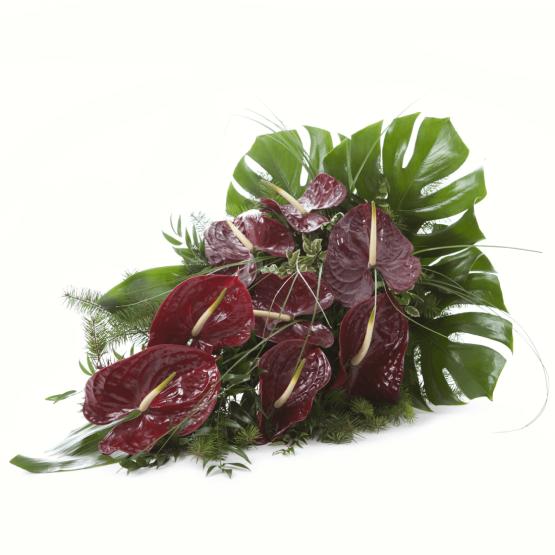 Volně vázaná kytice vínové anthurie