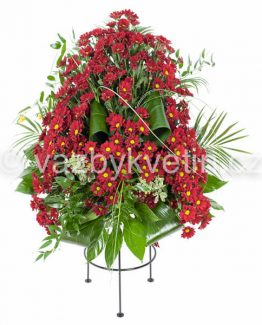 Variace vínové chryzantémy