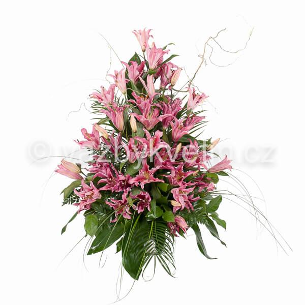 Variace růžové lilie