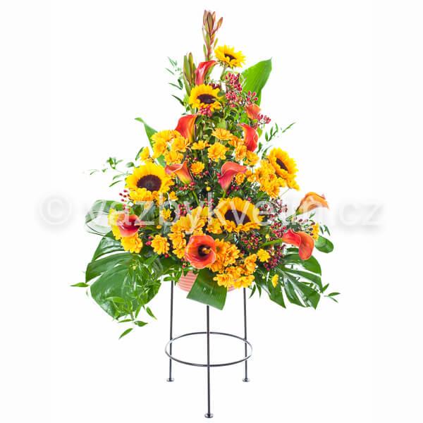 Variace slunečnice
