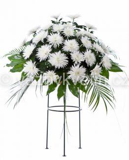 Aranžmá bílé jednokvěté chryzantémy